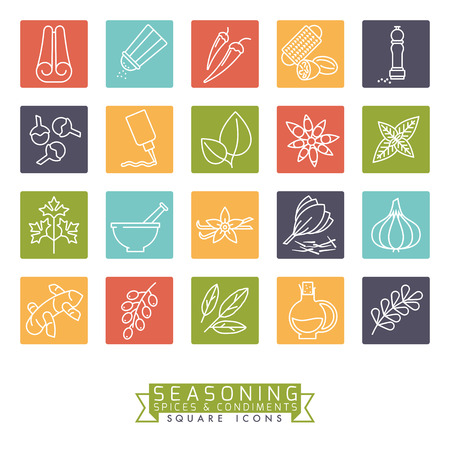 Collection of square colored spices, herbs, condiments and seasoning vector icons