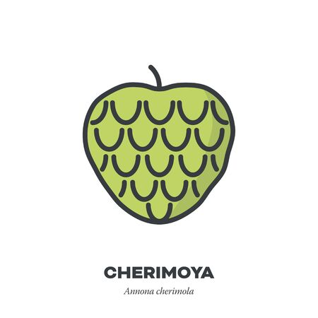 Cherimoya icon, outline with color fill style vector illustration, custard apple fruit