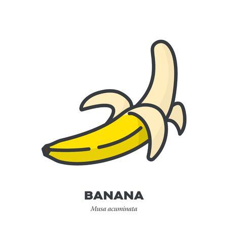 Icona di frutta banana, contorno con illustrazione vettoriale in stile riempimento colore, metà sbucciata