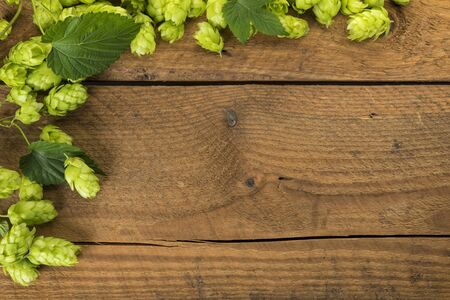 Rustic background, hops vines with ripe fruits and leaves on rough wood Foto de archivo - 130504279