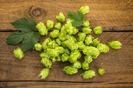 Heap of ripe common hops cones and leaves on rustic wooden background, high angle view