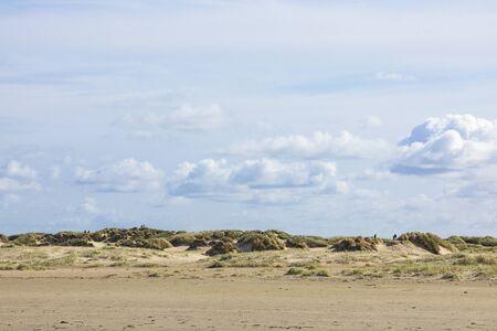 Dune landscape at the beach of Lakolk on Danish North Sea island of Rømø