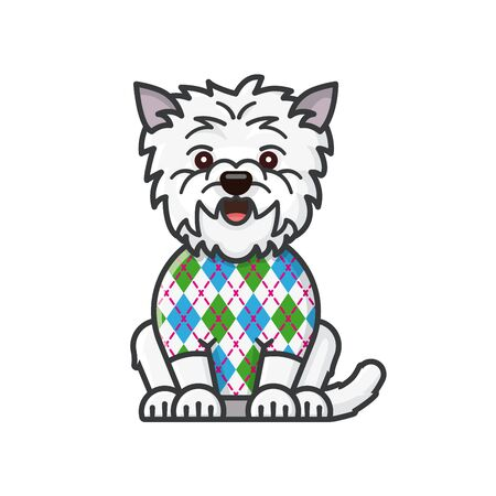 West Highland White Terrier with Argyle pattern on sweater isolated  color illustration for Argyle Day on January 8. Cartoon vector symbol of scottish tradition. Archivio Fotografico - 137877124