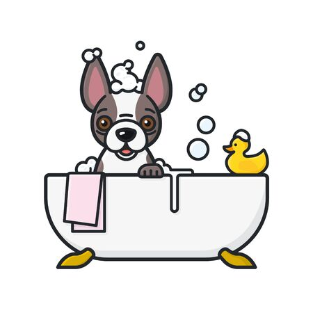 French Bulldog cartoon character bathing in bathtub isolated vector illustration for International Bath Day on June 14th. Symbol of pet care and hygiene. Vettoriali