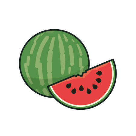 Whole watermelon and piece isolated vector illustration for Watermelon Day on August 3. Fresh fruit in summer symbol.