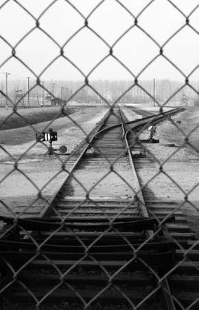 incoming: incoming railroad behind iron fence(auschwitz)