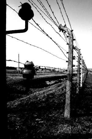 auschwitz: barbed wire in auschwitz