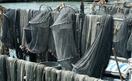 medias de red: fishnets
