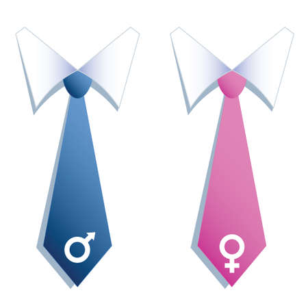 Blue and pink neckties of business man and woman with male and female symbols
