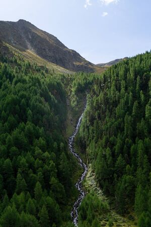 Waterfall in alpine region between green trees and in front of mountaians