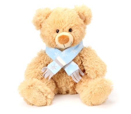 Spielzeug-Teddybär isoliert auf weißem Hintergrund
