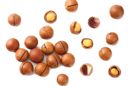 Macadamia nut isolated on a white background. top view Stock Photo