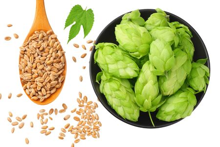 Green hops in a black plate with wooden spoon, wheat and green leaves isolated on a white background. top view