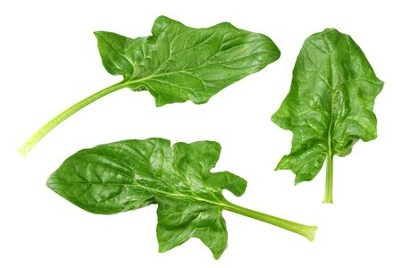 spinach leaves isolate on white background. Healthy food. Top view. Reklamní fotografie