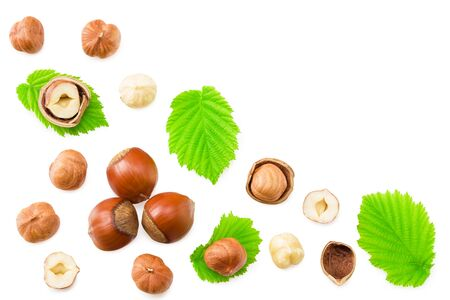 hazelnuts with leaves isolated on white background. top view Reklamní fotografie