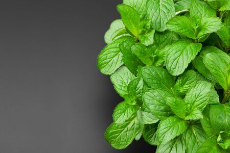Fresh mint leaves isolated on black background. top view