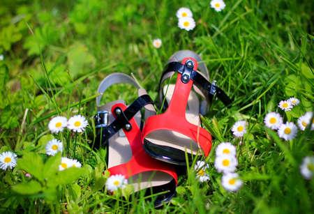 sandalias: zapatos de las sandalias de verano Foto de archivo