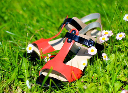 summer shoes: sandals  summer shoes Stock Photo