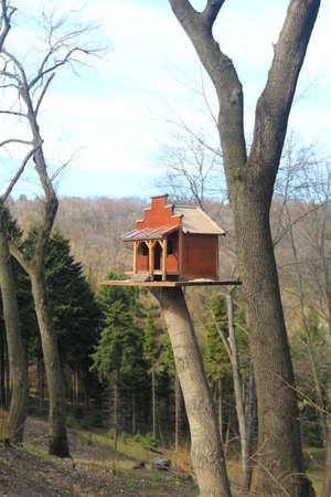 feeders: wooden house bird feeder Stock Photo