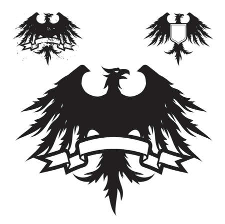 Black Eagle Illustration