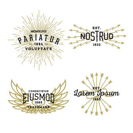 hipster vintage label, badge for your business or t-shirt print with star burst, lightning, wing, arrow, ribbon Çizim