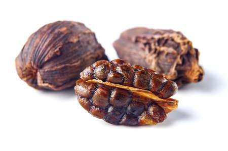Black cardamom pods isolated on white background photo
