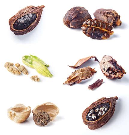 cardamom pods isolated on white background photo