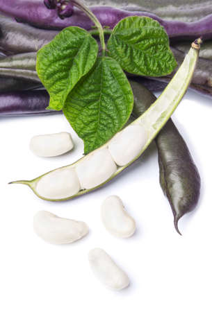 snap: Purple Wax Snap Beans on the white