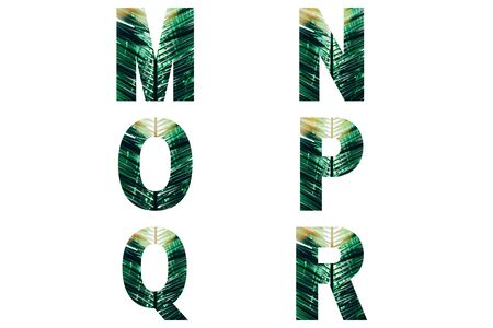Wicker font Alphabet m, n, o, p, q, r made of fresh green palm leaves with sunlight.