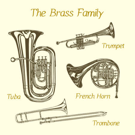 Vector illustration of hand drawn brass family instruments. Beautiful ink drawing of tuba, trumpet, trombone and french horn. Иллюстрация