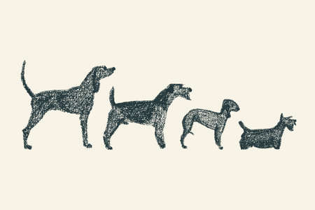 variety: Vector illustration of hand drawn dog breeds variety. Cute dogs characters drawn with chalk.