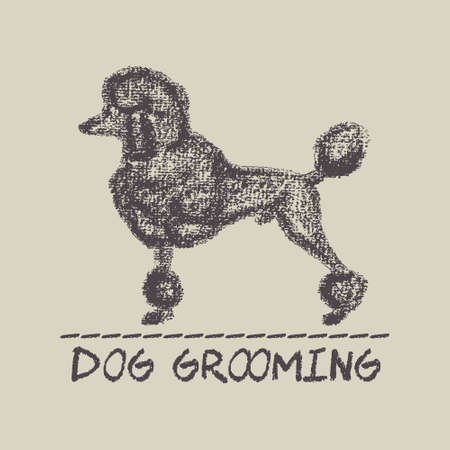 Vector Banner Of A Dog Grooming Salon With Hand Drawn Big Poodle