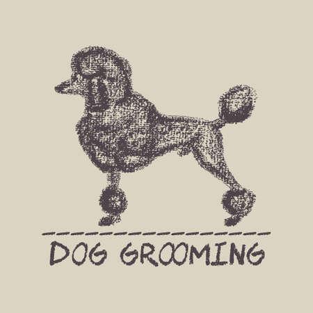vector de la bandera de una peluquería canina con dibujado a mano grande caniche. elementos de diseño hermosas.