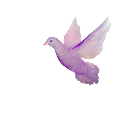 Vector card with hand painted watercolor pigeon flying in the sky
