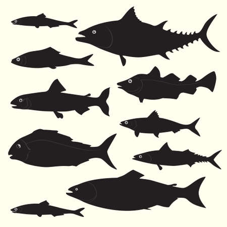 Le siluette del pesce hanno messo fatto nel vettore. Elementi di design fantastici perfetti per qualsiasi attività commerciale legata all'industria della pesca o dei frutti di mare.