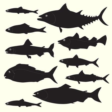 Le siluette del pesce hanno messo fatto nel vettore. Elementi di design fantastici perfetti per qualsiasi attività commerciale legata all'industria della pesca o dei frutti di mare. Vettoriali