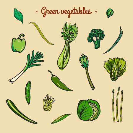 Set hand getrokken groene groenten gemaakt in vector.