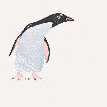 hand painted: Hand painted watercolor penguin illustration made in vector.