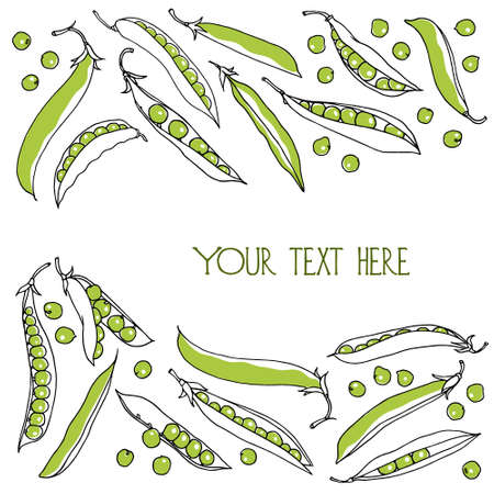 green pea: Card with hand drawn green pea pods. Vegetarian, healthy food illustration. Beautiful design elements. Illustration
