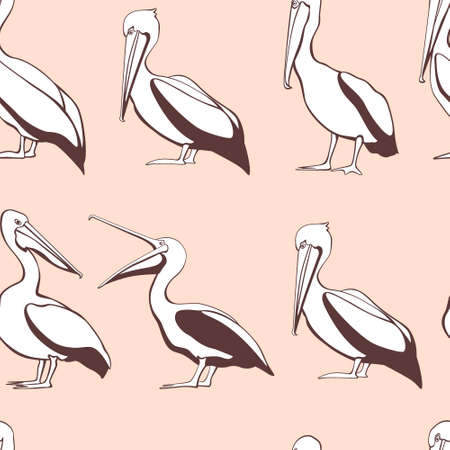 beach side: Vector seamless pattern with graceful pelicans.  Beautiful design elements, perfect for prints and patterns. Illustration