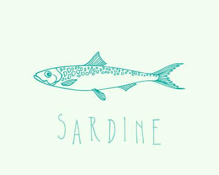 Illustrazione vettoriale di sardine disegnati a mano. Pubblicità, menu o packaging elementi di design accattivanti.