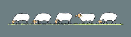 herd: Vector illustration of hand drawn sheep herd eating fresh grass on a meadow. Horizontal layout, cute animal characters.