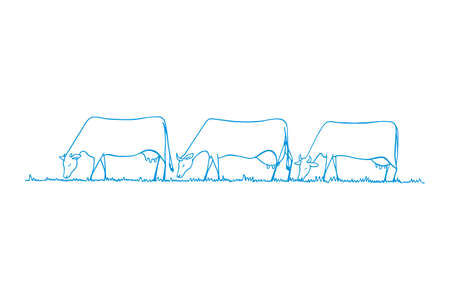 herd: Vector illustration of hand drawn cow herd eating fresh grass on a meadow. Horizontal layout, cute animal characters.