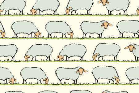 herd: Vector seamless pattern with hand drawn sheep herd eating fresh grass on a meadow. Beautiful design elements, cute animal characters. Horizontal rows.
