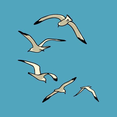 sea shore: card with  flying sea gulls. sea life design elements. Illustration
