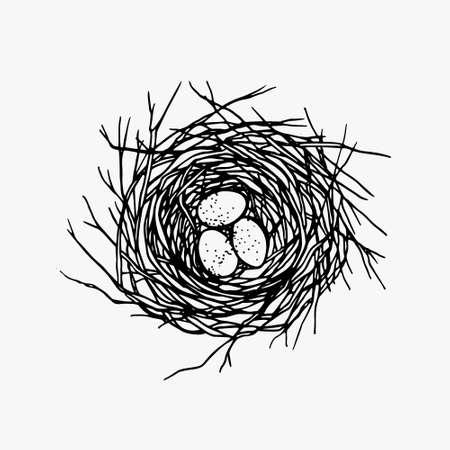 Vector illustration de la main dessinée nid avec des oeufs tachetés. le style graphique, belle illustration