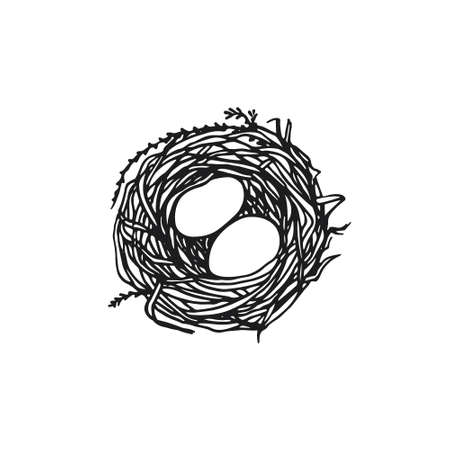 straw twig: Vector illustration of hand drawn nest with eggs. Graphic style, beautiful illustration