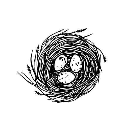 Ilustración de vector de nido dibujado a mano con huevos manchados. Estilo gráfico, hermosa ilustración
