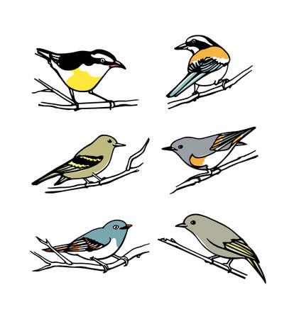 Vector graphic set of hand drawn North America birds sitting on branches. Ink drawing, graphic style.