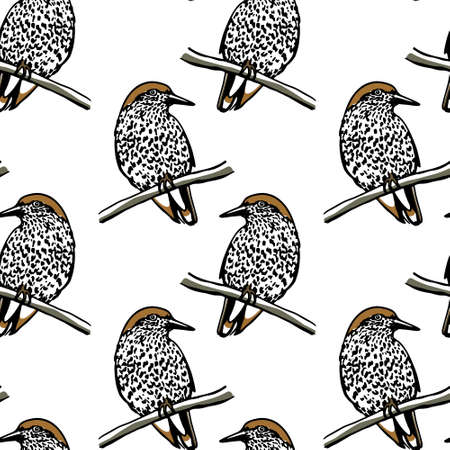motley: Vector seamless pattern with hand drawn motley birds sitting on the branches. Ink drawing, graphic style, perfect for prints and patterns. Illustration